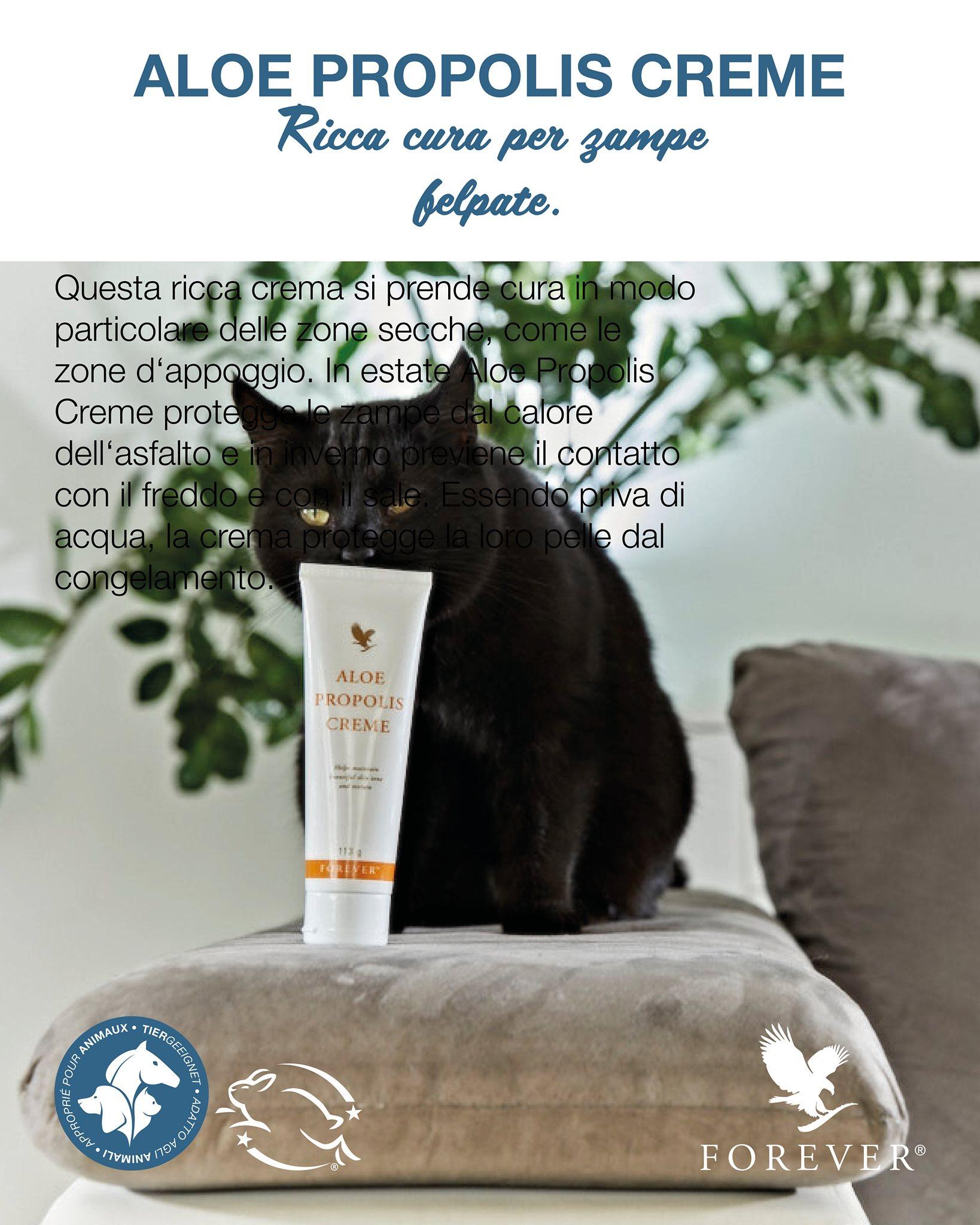 Aloe Vera per Cane e Gatto